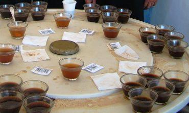 Concurso Qualidade de Café tem recorde de participantes