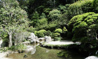 Cônsul japonês visita Poços na sexta