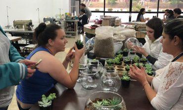 Oficina de jardinagem e paisagismo é oportunidade para inserção no mercado de trabalho