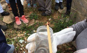 Saúde realiza trabalho de prevenção de acidentes com escorpiões