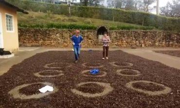 Alunos da zona rural encontram maneiras criativas para realizar atividades de Educação Física durante a quarentena