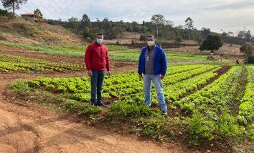 PAA e Banco de Alimentos: uma parceria de sucesso