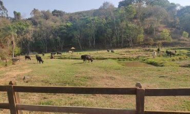 Poços apresentará Projeto de Turismo Rural  em encontro no dia 30 de setembro