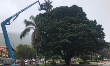 Prefeitura inicia a instalação da decoração de Natal